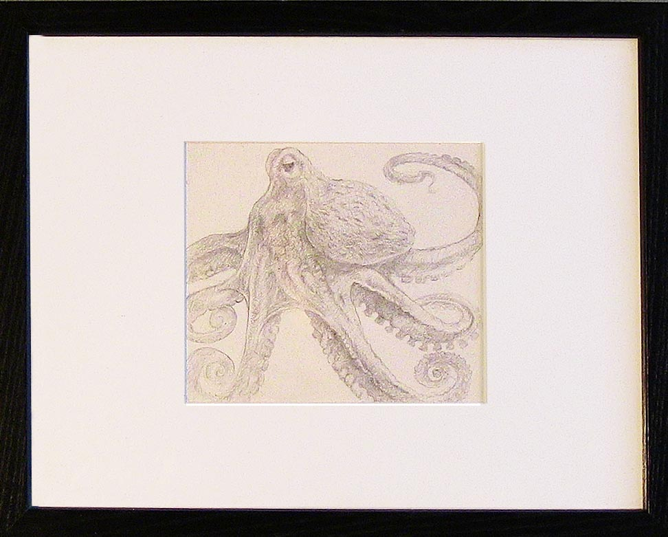 Framed Silver Point drawing of an Octopus